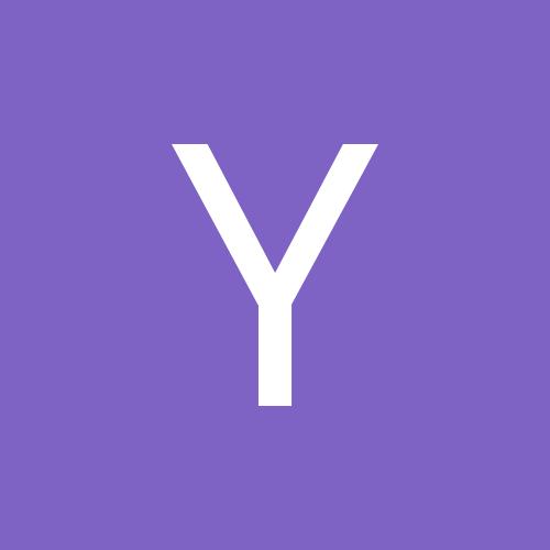 YarisShoe